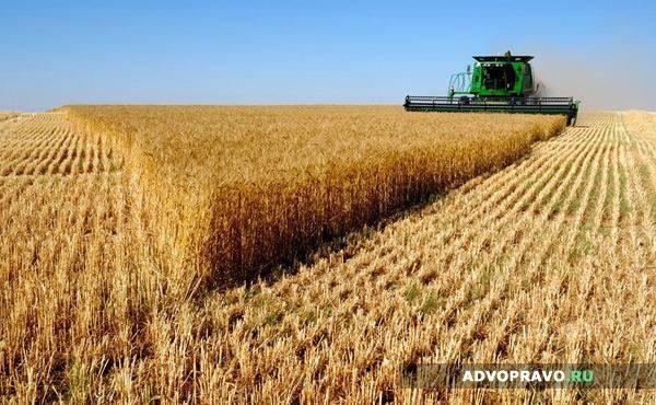 Договор Аренды Сельхоз Земли Образец - фото 11